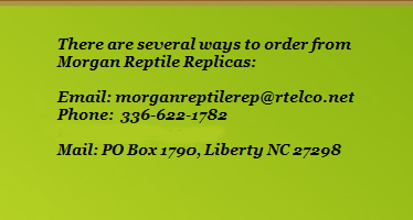 There are several ways to order from              Morgan Reptile Replicas:                            Email: morganreptilerep@rtelco.net              Phone:  336-622-1782              Fax: 336-622-1933              Mail: PO Box 1790, Liberty NC 27298